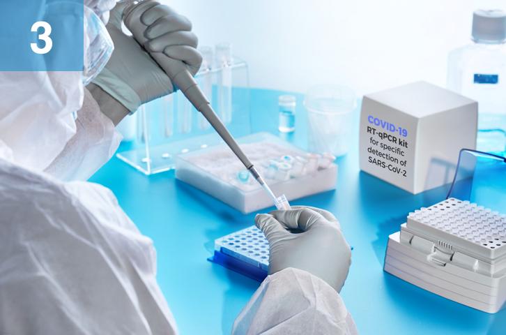 DNA Quantification